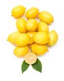 Fresh lemon bunch Stock Photos