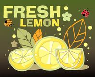 Fresh lemon card Stock Photos