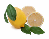 Fresh lemon citrus with cut Royalty Free Stock Photos