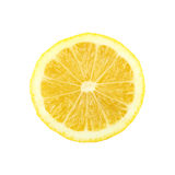 Fresh lemon citrus. Stock Image