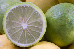 Fresh lemon cut Royalty Free Stock Photography