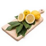 Fresh Lemon Stock Photography