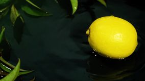 Fresh lemon drops on water surface slow motion video stock footage