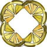 Fresh lemon fruit healthy food. Watercolor background illustration set. Frame border ornament square. Fresh lemon fruit healthy food. Watercolor background vector illustration