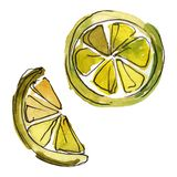 Fresh lemon fruit isolated. Watercolor background illustration set. Isolated desserts illustration element. Fresh lemon fruit isolated. Watercolor background stock illustration