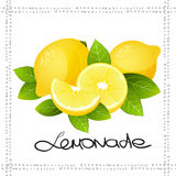 Fresh lemon fruit slice. Realistic juicy citrus with leaves vector illustration  Royalty Free Stock Photo