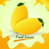 Fresh lemon. Fruit is to drink and eat, vector with a yellow background Stock Images