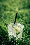 Fresh lemon ginger cocktail with straw in summer sun Stock Photo