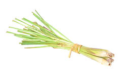 Fresh Lemon Grass on white background Royalty Free Stock Photography
