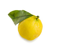 Fresh lemon with green leaf on white. Royalty Free Stock Images