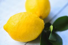 Fresh lemon with green leaves on the table background. On summer stock photography