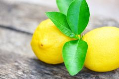 Fresh lemon with green leaves on the table background. On summer royalty free stock photo