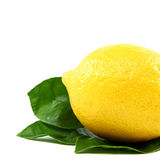 Fresh lemon with green leaves, on a white background. Royalty Free Stock Photography