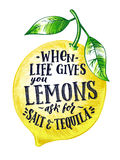 Fresh lemon with hand writing phrase. Fruits vector illustration isolate on white. Citrus food yellow lemon with green Royalty Free Stock Photography