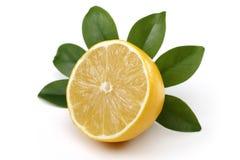 Fresh lemon royalty free stock image