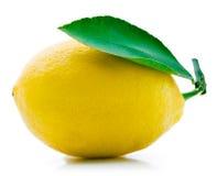 Fresh lemon with leaf isolated on white Stock Images