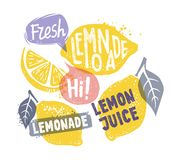 Lemon with leaf and text Royalty Free Stock Photos