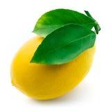 Fresh lemon with leaves isolated on white Stock Photos
