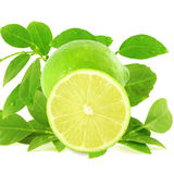 Fresh lemon lime citrus fruit with leaves and cutting in white background Royalty Free Stock Photo