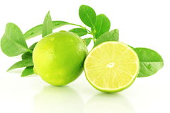 Fresh lemon lime citrus fruit  with leaves in white background Stock Images