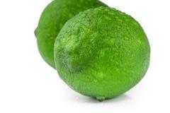 Fresh lemon lime isolated on white Royalty Free Stock Image