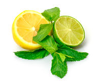 Fresh Lemon, Lime and Mint Royalty Free Stock Image