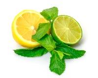 Fresh Lemon, Lime and Mint royalty free stock image