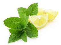 Fresh lemon and mint Royalty Free Stock Image