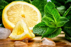Fresh lemon, mint and ice Royalty Free Stock Images
