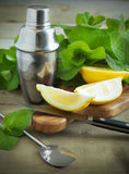 Fresh lemon and mint. Stock Image
