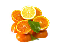 Fresh lemon and orange fruits Stock Photography