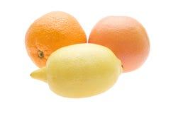 Fresh lemon, orange, grapefruit Royalty Free Stock Photography