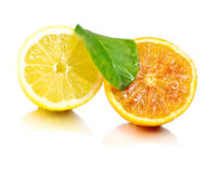 Fresh lemon and orange pulp Royalty Free Stock Photography