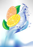 Fresh lemon orange slices in water splash Stock Image