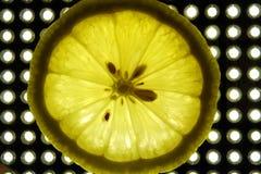 Lemon isolated on a white background. royalty free stock image