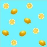 Fresh lemon pattern Stock Image