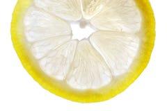 Fresh Lemon Slice. On white background stock photo