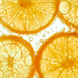 Fresh lemon slice in water with bubbles Royalty Free Stock Image