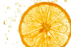 Fresh lemon slice in water with bubbles Royalty Free Stock Photography