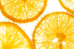 Fresh lemon slice in water with bubbles Stock Images