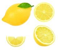 Fresh lemon slice Royalty Free Stock Image