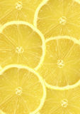 Fresh Lemon Slices Royalty Free Stock Photography