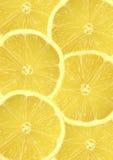 Fresh Lemon Slices. Six overlapping fresh lemon citrus slices Royalty Free Stock Photography
