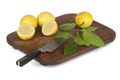 Fresh lemon slices arranged on oblong plate Royalty Free Stock Photo