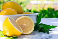 Fresh lemon and a sprig of mint Stock Images