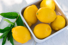 Fresh lemon and a sprig of mint Royalty Free Stock Photography