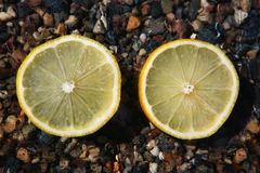 Fresh Lemon Water Drops stones. Background stock image