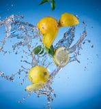 Fresh lemon with water splash Royalty Free Stock Photos