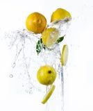 Fresh lemon with water splash Royalty Free Stock Image