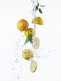 Fresh lemon with water splash Stock Images